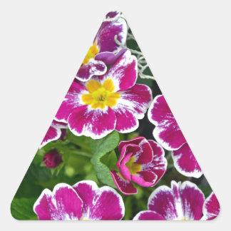 紫色および黄色のサクラソウの花 三角形シール