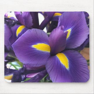 紫色および黄色アイリス マウスパッド