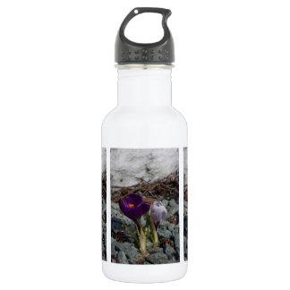 紫色でかわいらしい ウォーターボトル