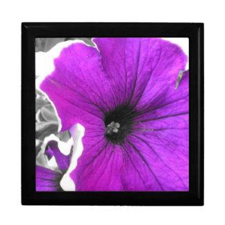 紫色によって染められる白黒ペチュニア スクエアギフトボックス大