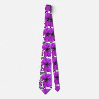 紫色によって染められる白黒ペチュニア タイ