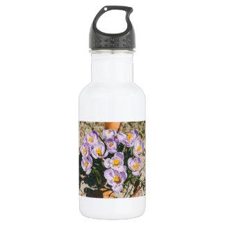 紫色にクロッカスの花の咲くこと ウォーターボトル