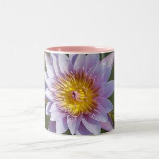紫色のはすかスイレン ツートーンマグカップ