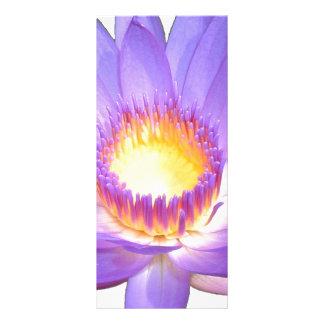 紫色のはすの花の棚カード ラックカード