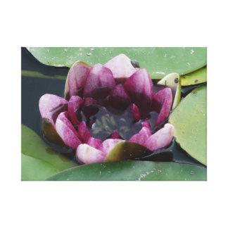 紫色のはす写真撮影の独身のなプリント キャンバスプリント