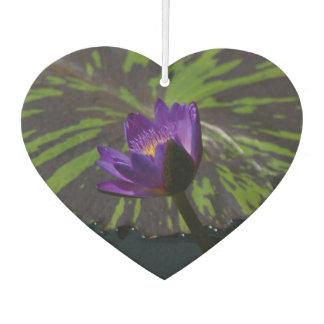 紫色のはす《植物》スイレン カーエアーフレッシュナー
