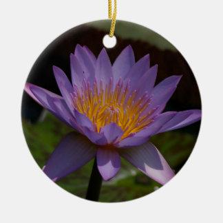 紫色のはす《植物》スイレン セラミックオーナメント