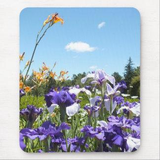 紫色のアイリスおよび空のマウスパッド マウスパッド