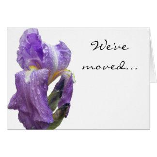 紫色のアイリス写真の発表 カード