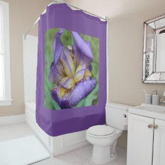紫色のアイリス(アイリスGermanica) シャワーカーテン