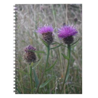 紫色のアザミのトリオ ノートブック