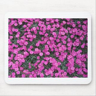 紫色のカーネーションの花の自然バックグラウンド マウスパッド