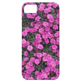 紫色のカーネーションの花の自然バックグラウンド iPhone SE/5/5s ケース