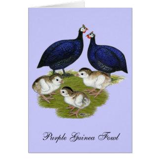 紫色のギニー家族 カード