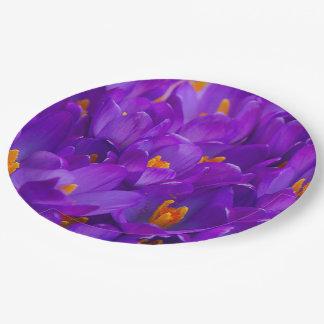紫色のクロッカスの分野 ペーパープレート
