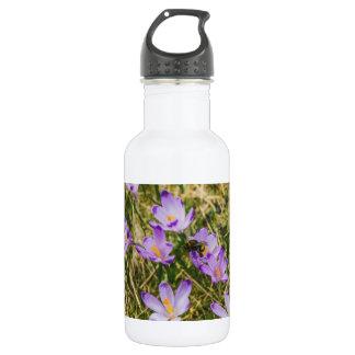 紫色のクロッカスの花の蜂、自然の写真 ウォーターボトル