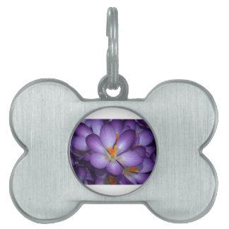 紫色のクロッカスの花束 ペットネームタグ