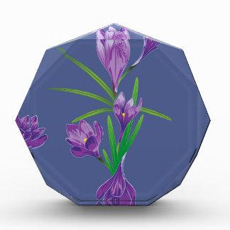 紫色のクロッカスの花5 表彰盾