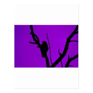 紫色のゴシック様式カラス ポストカード
