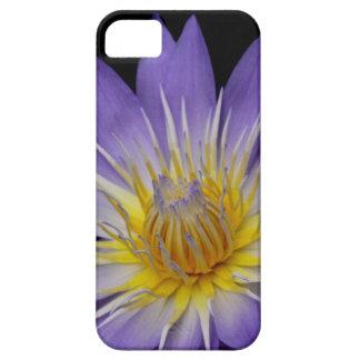 紫色のスイレンの携帯電話の箱 iPhone SE/5/5s ケース