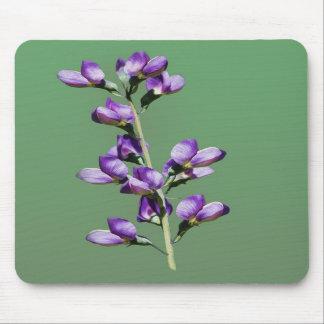 紫色のスイートピーの花のマウスパッド マウスパッド