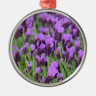 紫色のスペインのなラベンダーの花 メタルオーナメント