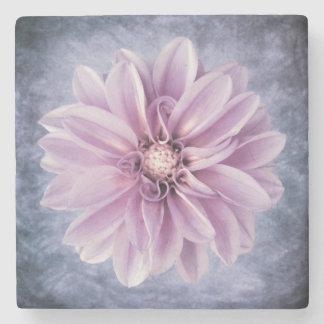 紫色のダリアの花のクローズアップのカラフルの花柄 ストーンコースター