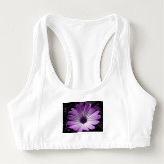 紫色のデイジーの花はブラを遊ばします スポーツブラ
