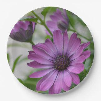 紫色のデイジー ペーパープレート