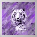 紫色のトラ ポスター