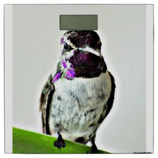紫色のハチドリのBathのスケール 体重計