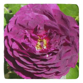 紫色のバラの花びら トリベット