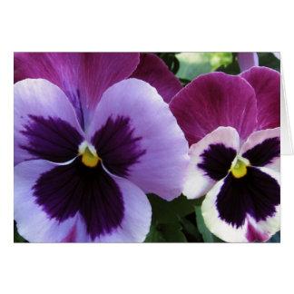 紫色のパンジーの相棒 カード