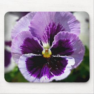 紫色のパンジーの終わり マウスパッド