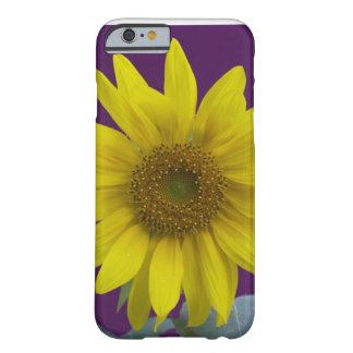 紫色のヒマワリ BARELY THERE iPhone 6 ケース