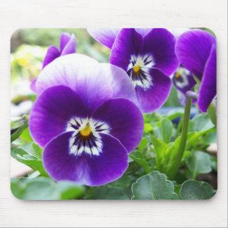 紫色のビオラ マウスパッド