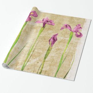 紫色のピンクのアイリスによってはブラウンの背景の花柄が開花します ラッピングペーパー
