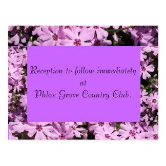紫色のフロックス属の結婚披露宴カード ポストカード