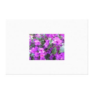 紫色のブーゲンビリアのキャンバスプリント キャンバスプリント