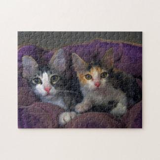紫色のベッドの子ネコ ジグソーパズル