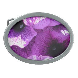 紫色のペチュニアの列 卵形バックル
