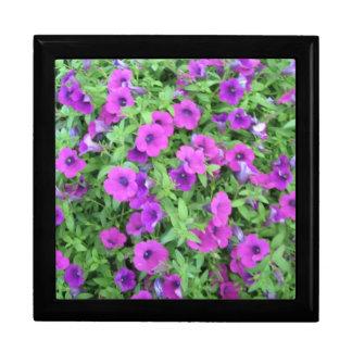 紫色のペチュニアの記念品箱 ギフトボックス