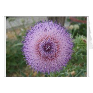 紫色のマリアアザミ カード