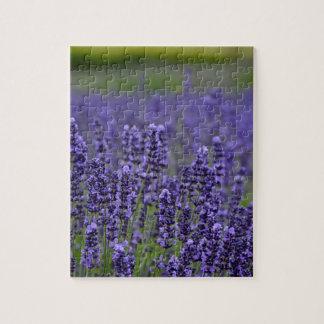 紫色のラベンダー草原 ジグソーパズル