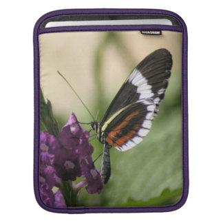 紫色の側面の蝶 iPadスリーブ