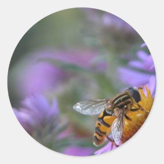 紫色の情熱の蜂の円形のステッカー ラウンドシール