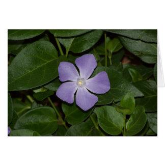 紫色の星 ノートカード