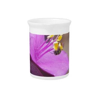 紫色の植物はspiderwortおよび小さい蜂を呼びました ピッチャー