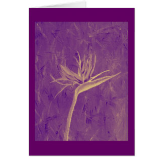 紫色の極楽鳥 カード