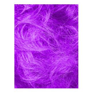 紫色の毛皮 ポストカード